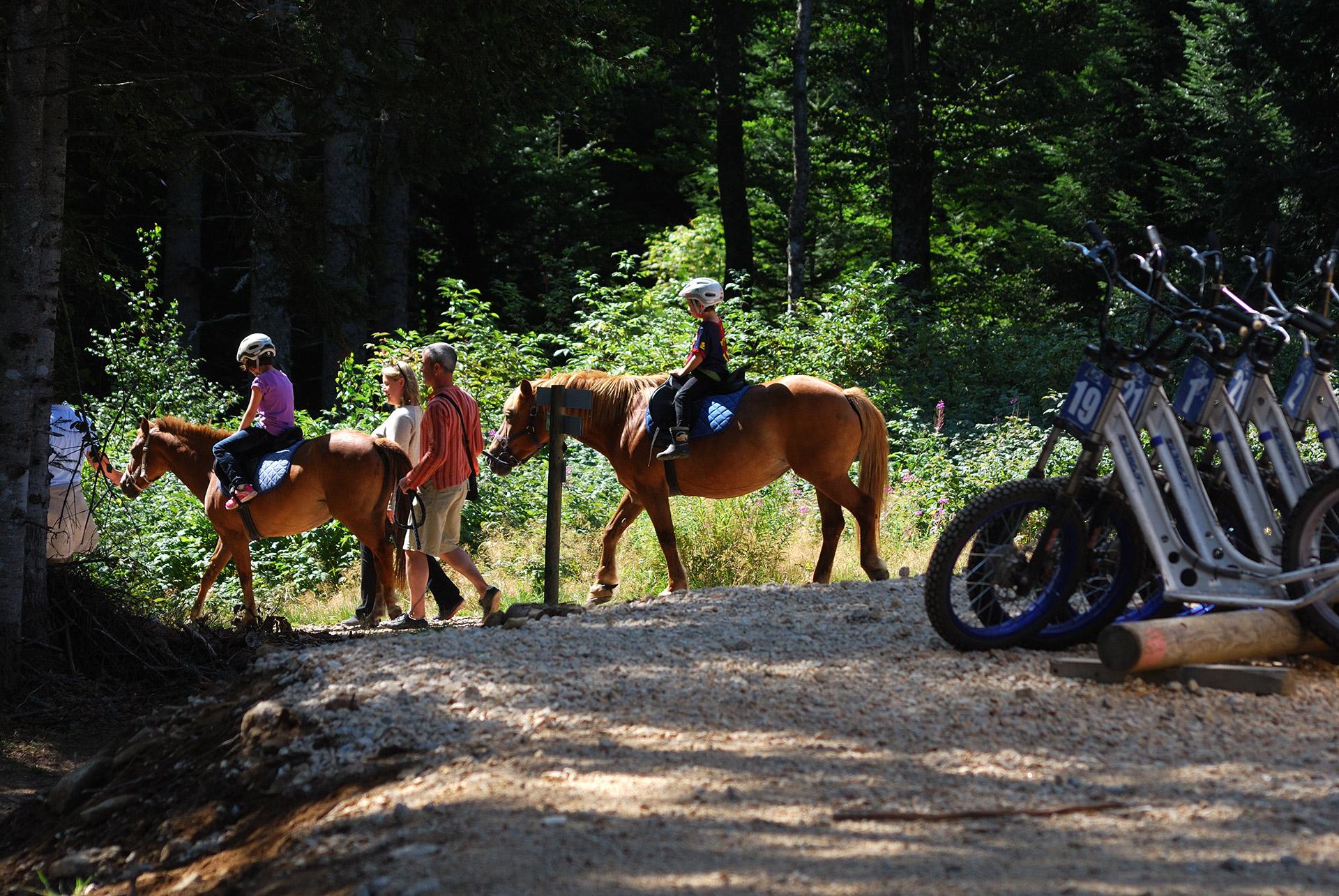 praboure-parc-activite-montagne-balades-en-poneys