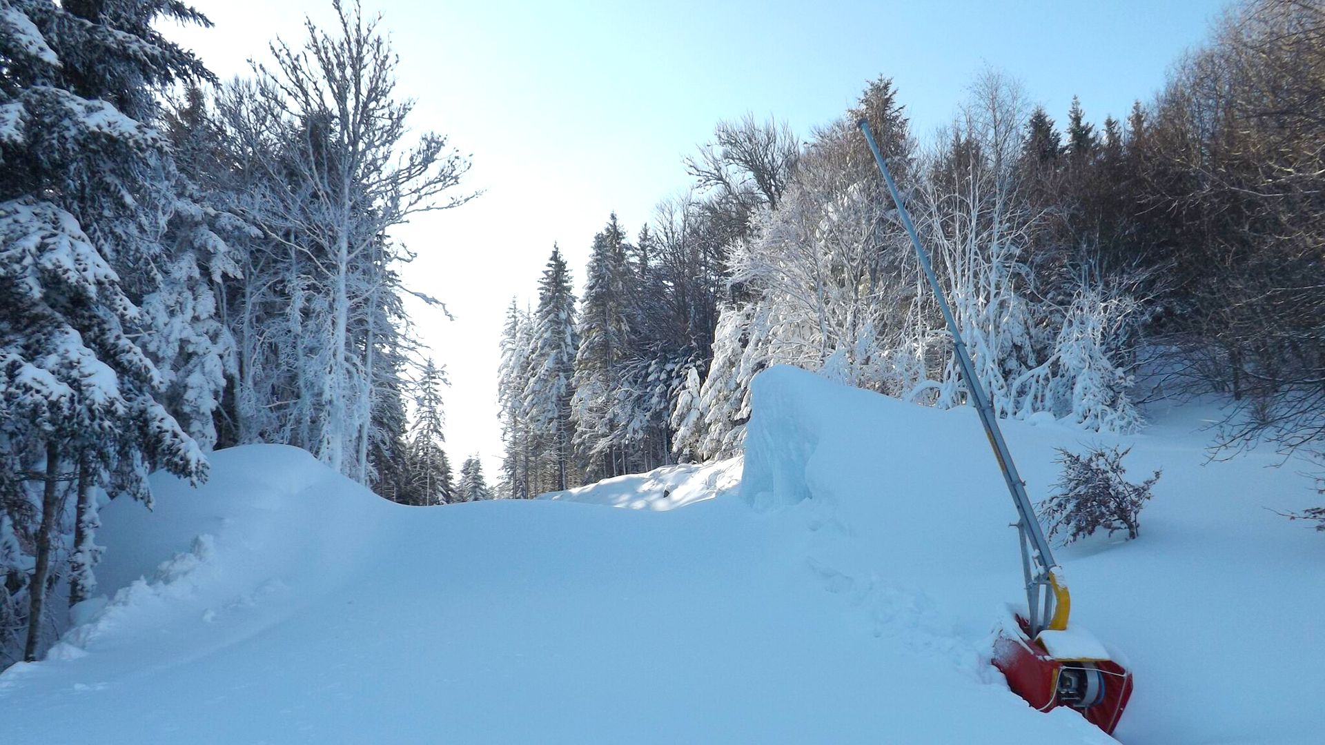 parc-activites-montagne-praboure-domaine-alpin-banner